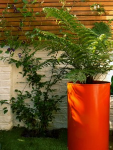 Contrasting bright planters